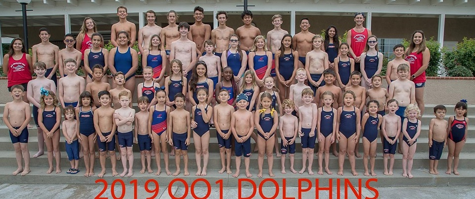 Old Orchard DOLPHINS!
